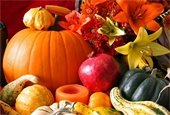 Thanksgiving Holiday - Trash Collection Services