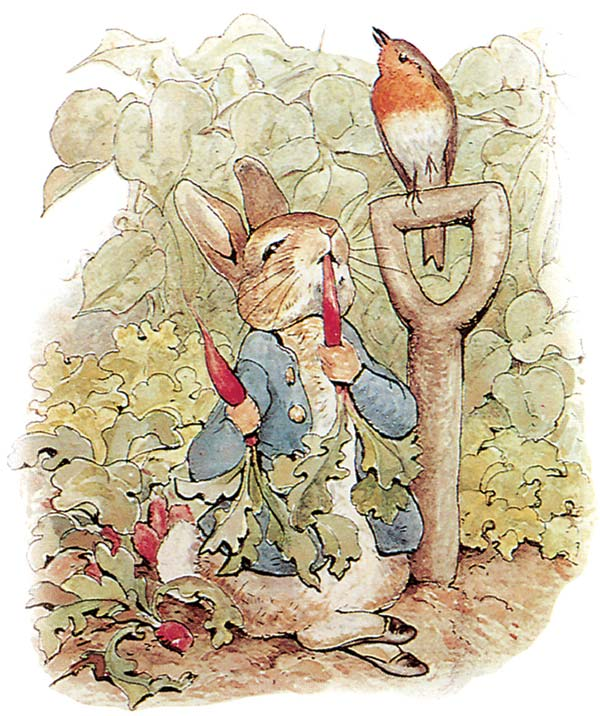 PeterRabbit by Beatrix Potter
